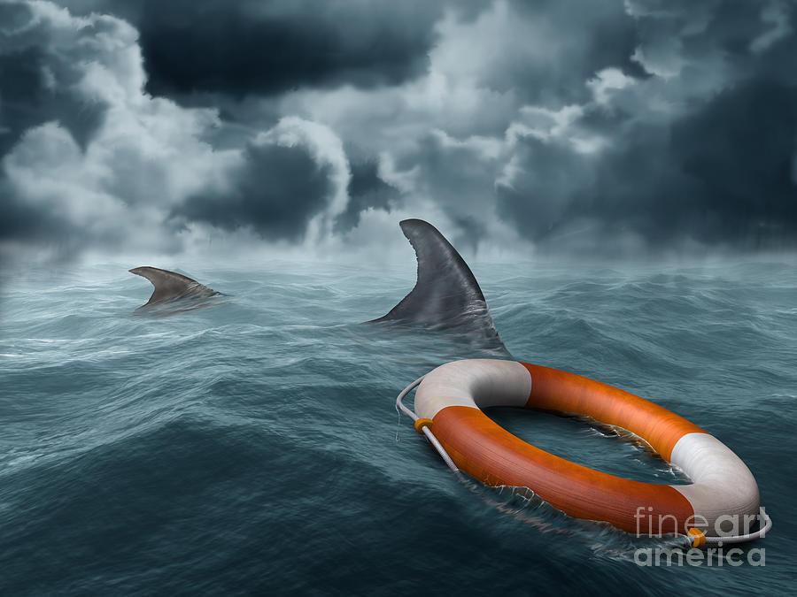 lost at sea essays