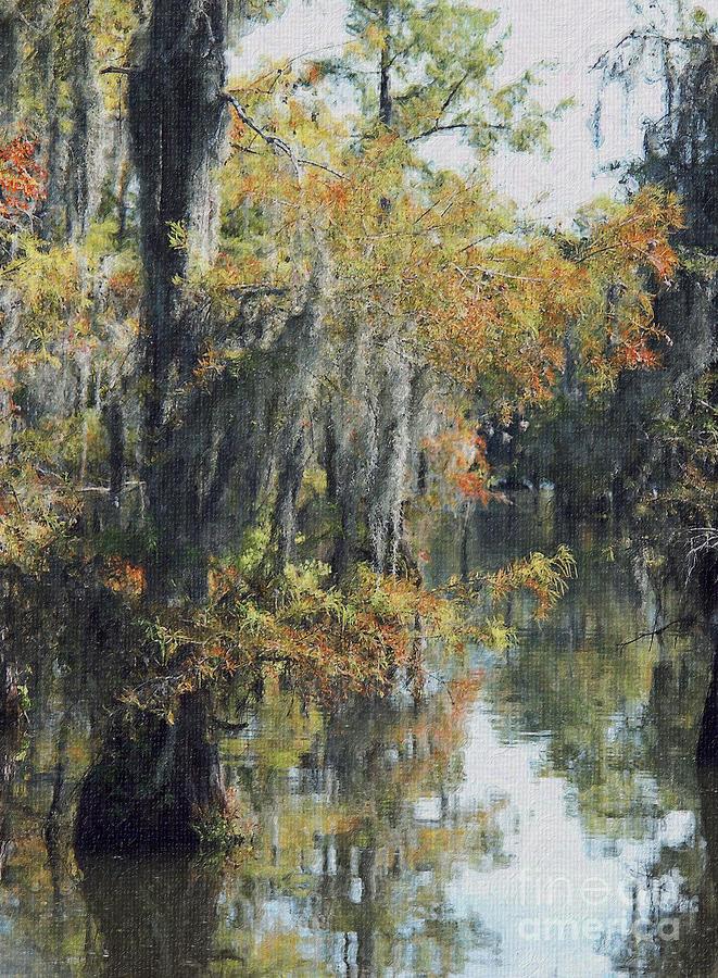 Louisiana Bayou Foliage In Early October Photograph