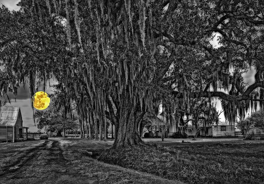 New Orleans Photograph - Louisiana Moon Rising Monochrome 2 by Steve Harrington