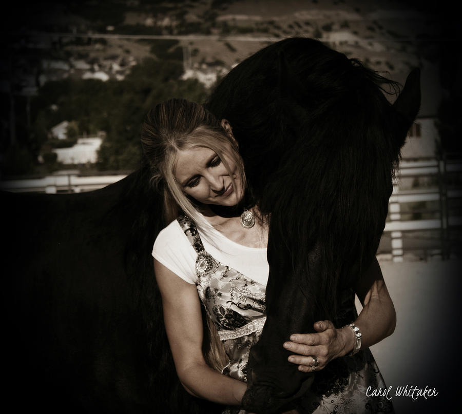 Friesian Stallion Canvas Print Photograph - Love Hugs by Royal Grove Fine Art