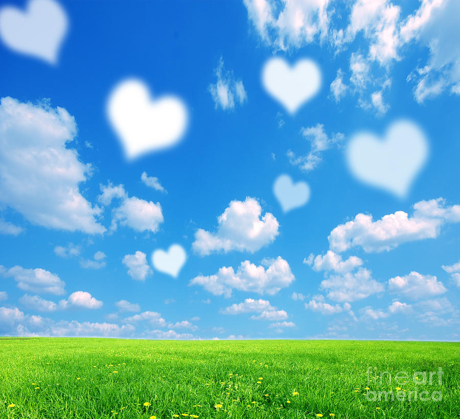 Background Photograph - Love Nature Background by Michal Bednarek