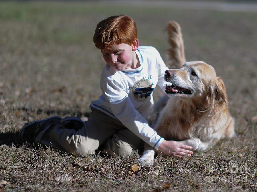 Love Of A Dog Photograph