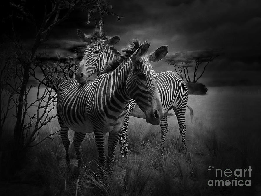 Love Season IIi - African Dream I Photograph  - Love Season IIi - African Dream I Fine Art Print