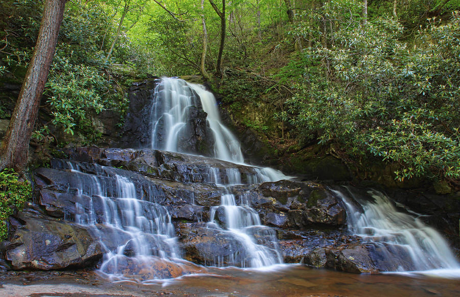Lovely laurel falls photograph by shari jardina for Jardina