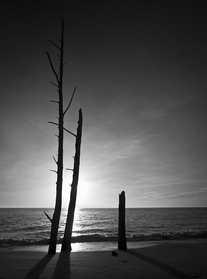 Lovers Key Sunset Black And White One Photograph