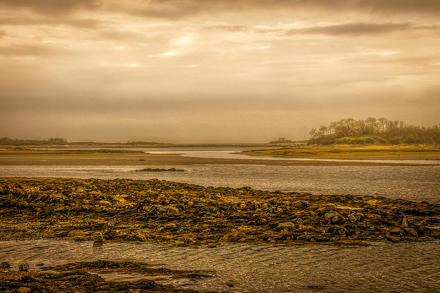 Low Tide Cape Porpoise Maine Photograph