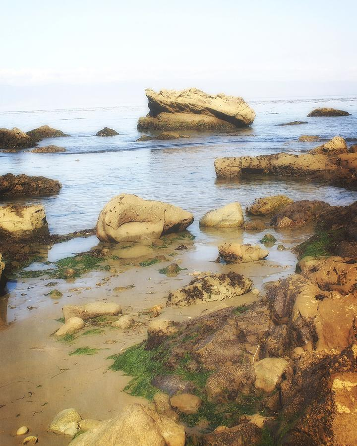 Low Tide Photograph