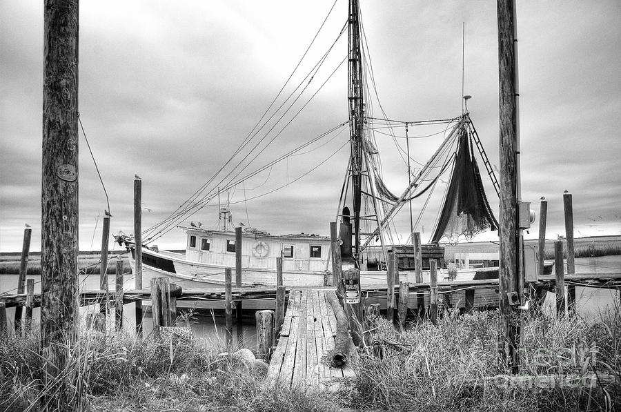 Lowcountry Shrimp Boat Photograph  - Lowcountry Shrimp Boat Fine Art Print