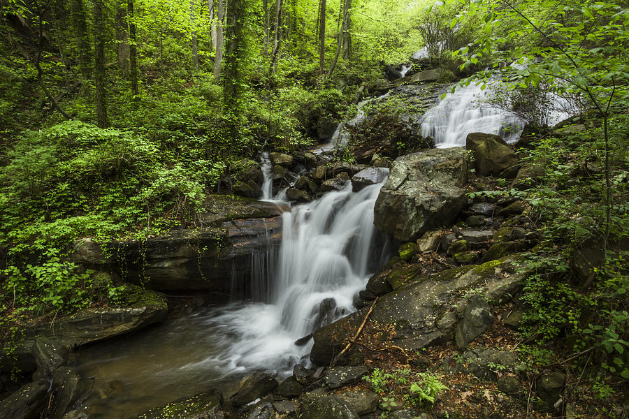 Lower Amicalola Falls Photograph