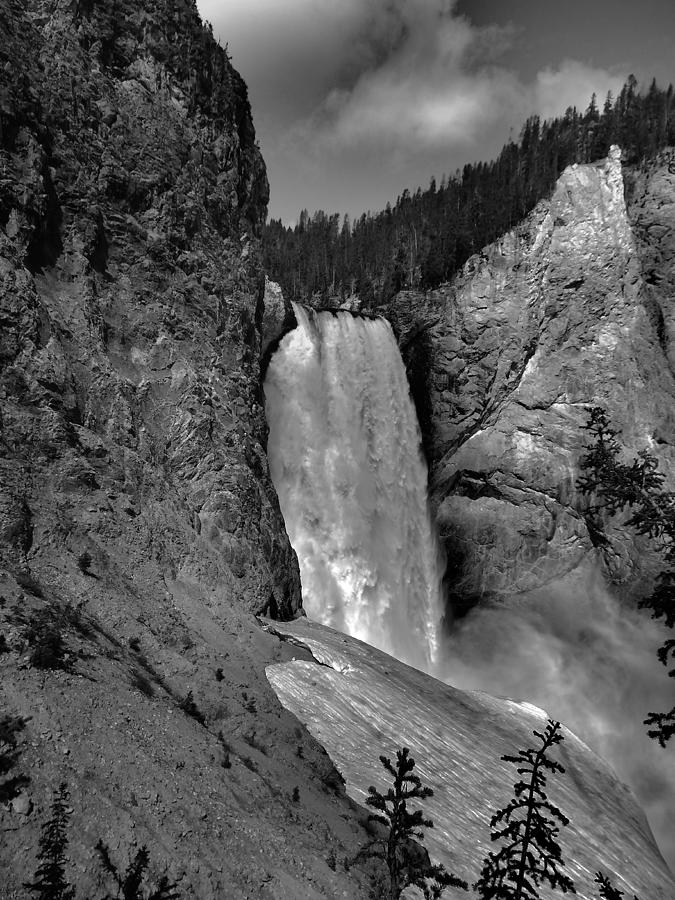 Lower Falls In Yellowstone In Black And White Photograph