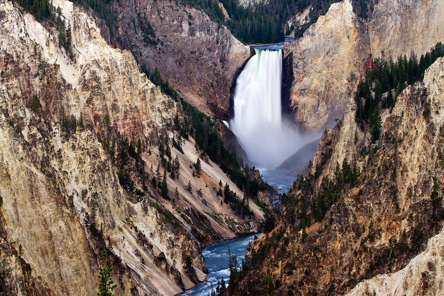 Lower Yellowstone Falls Photograph  - Lower Yellowstone Falls Fine Art Print