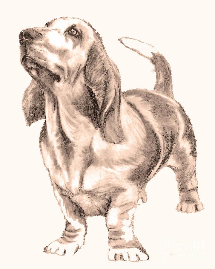 Animals Drawing - Loyal Eyes by Nan Wright