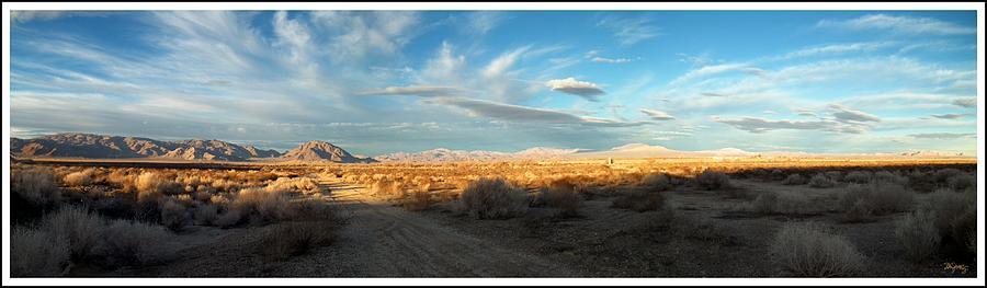 Lucerne Desert Vista Photograph