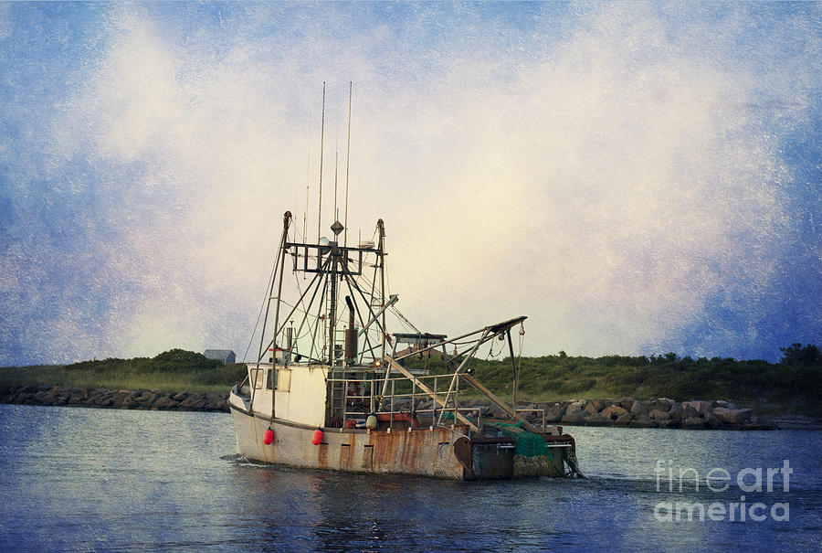 Trawler Photograph - Lucky Catch by A New Focus Photography