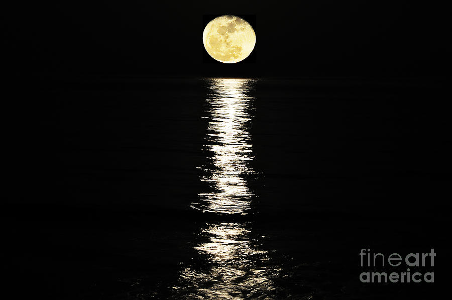 Lunar Lane Photograph  - Lunar Lane Fine Art Print