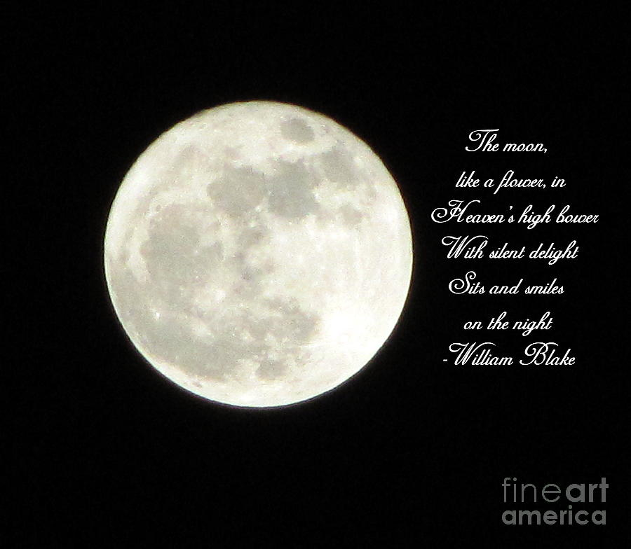 Full Moon Photograph - Lunar Verse by Avis  Noelle