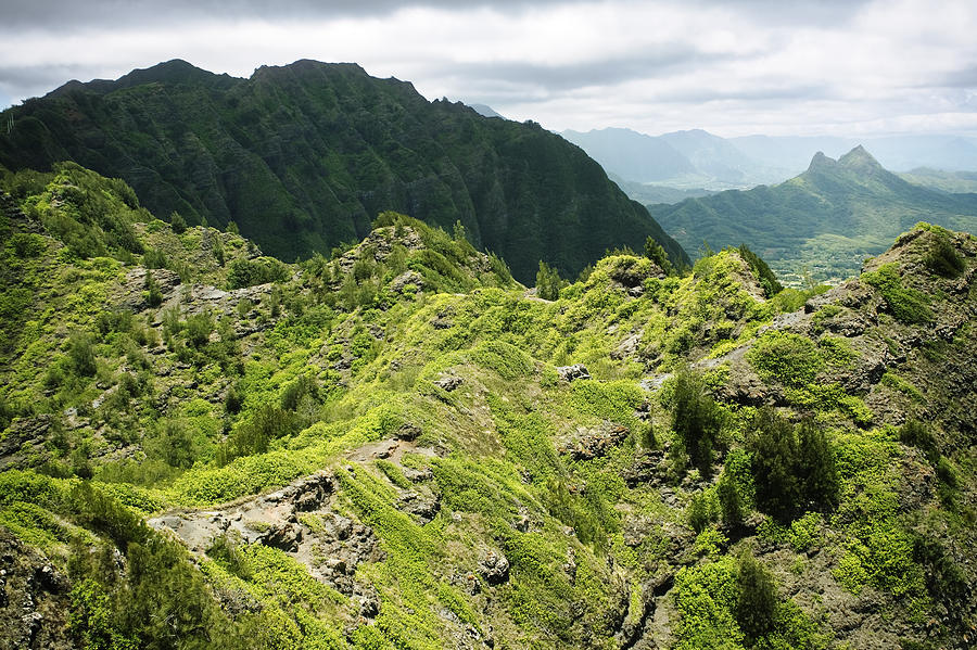 Lush Hawaiian Mountains Photograph