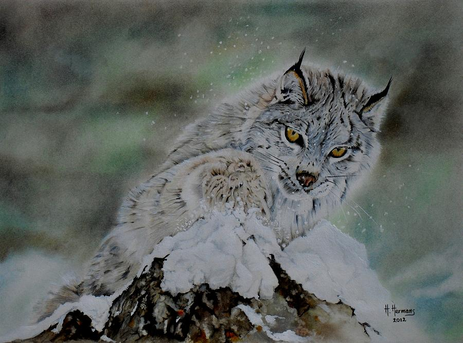 Lynx Playing With Snow Drawing  - Lynx Playing With Snow Fine Art Print
