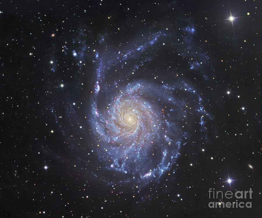 M101, The Pinwheel Galaxy In Ursa Major Photograph