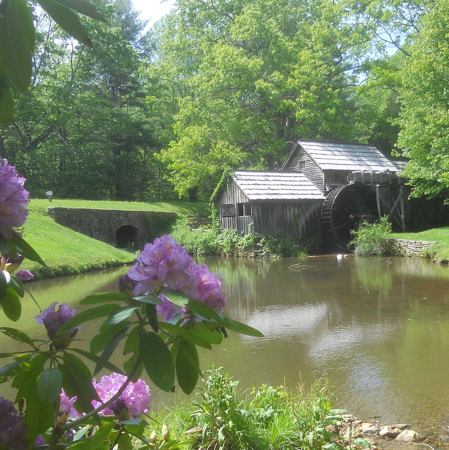 Mabry Mill In May Photograph  - Mabry Mill In May Fine Art Print