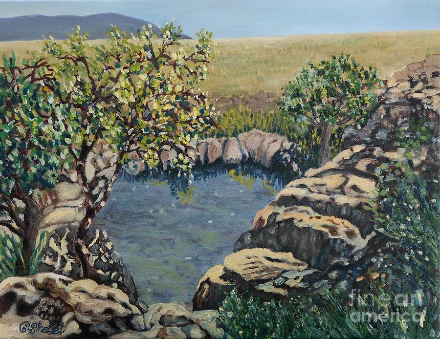 Rivers Painting - Mac Mac Pools by Caroline Street