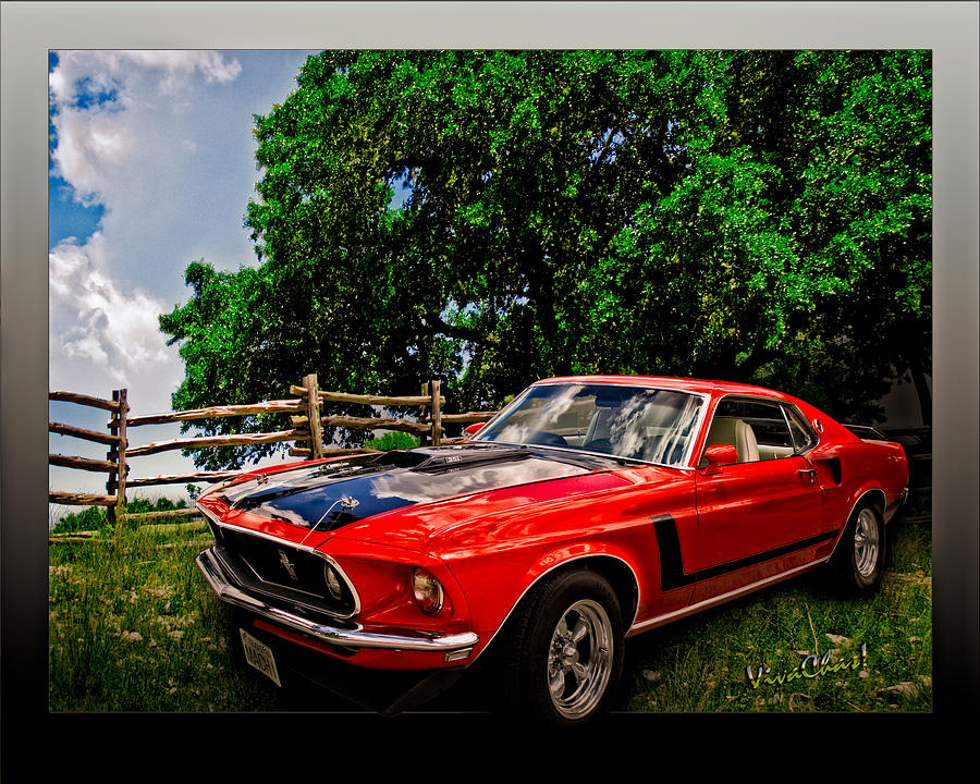 Mach One Mustang 1969 Photograph  - Mach One Mustang 1969 Fine Art Print