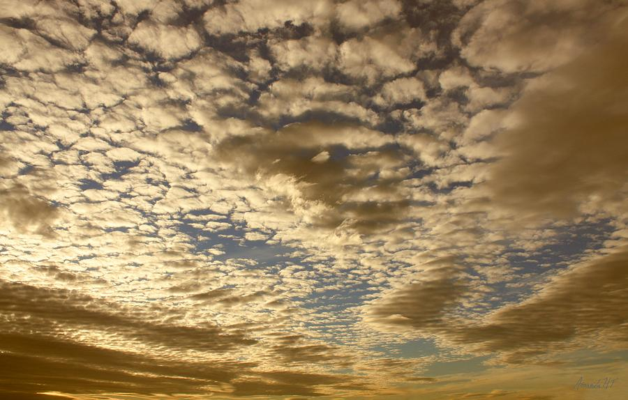 Mackerel Sky Golden Photograph  - Mackerel Sky Golden Fine Art Print