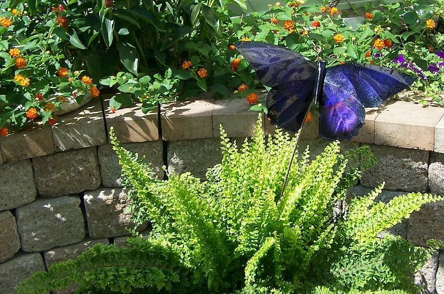 Mackinac Island Butterfly House