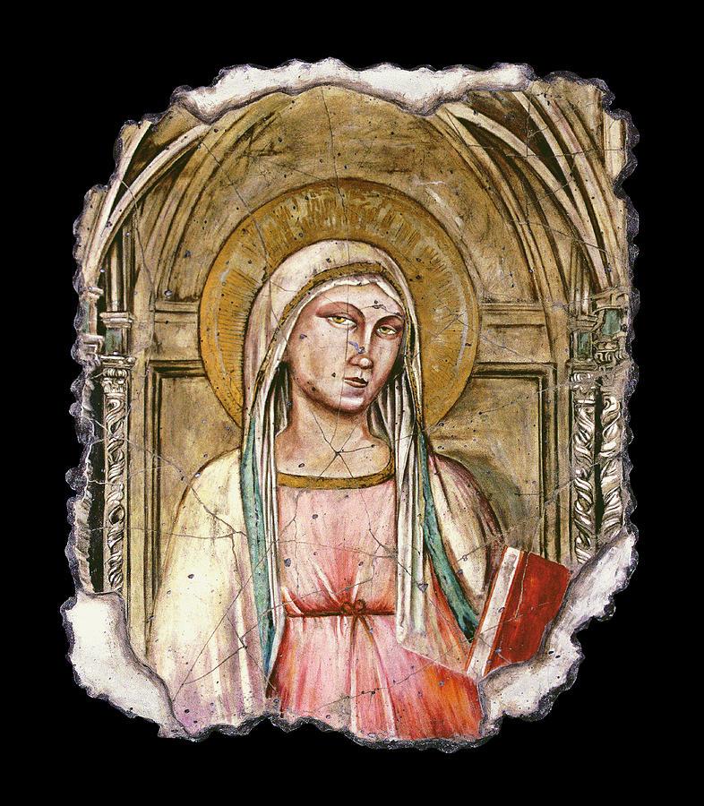Madonna Del Parto Painting