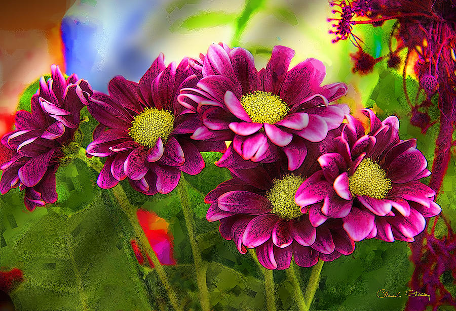 Magenta Flowers Mixed Media  - Magenta Flowers Fine Art Print