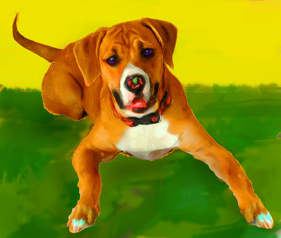 Boxer Pup Playing Mixed Media - Maggie by Tammy Berk
