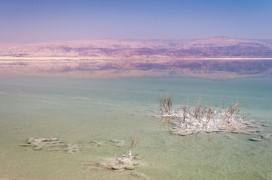 Magic Colors Of The Dead Sea Photograph  - Magic Colors Of The Dead Sea Fine Art Print
