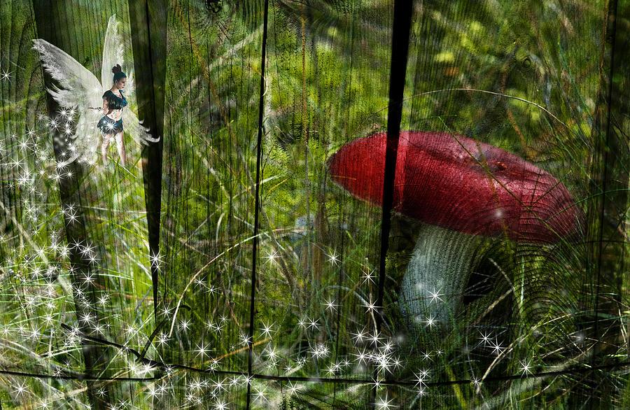 Beautiful Digital Art - Magic Mushroom. by Nathan Wright