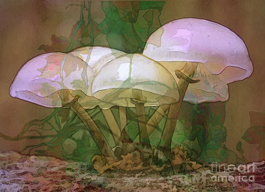 Magic Mushrooms Digital Art  - Magic Mushrooms Fine Art Print