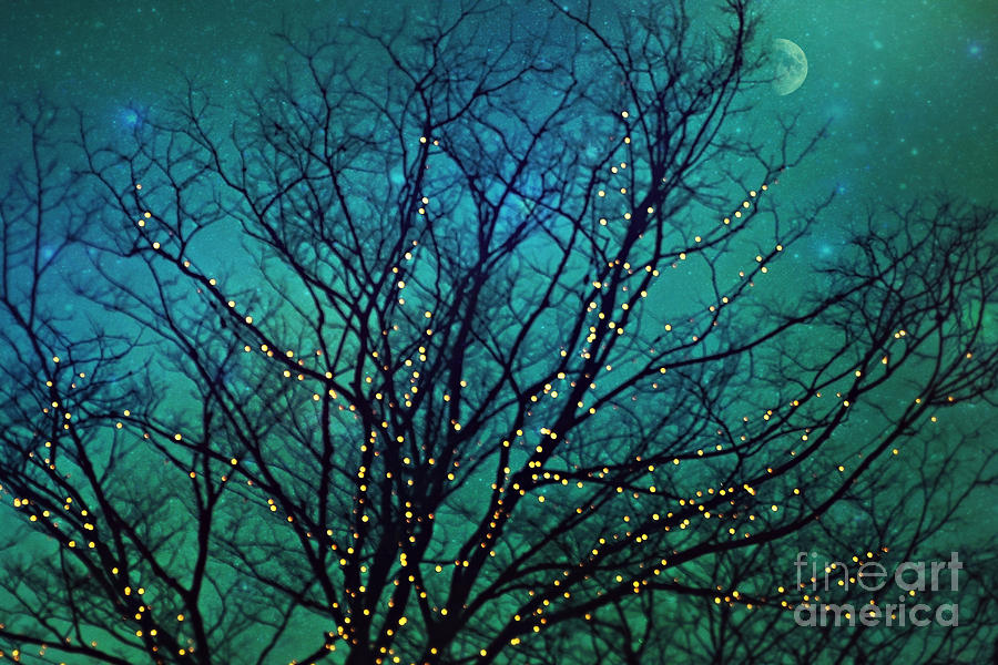 Magical Night Photograph  - Magical Night Fine Art Print
