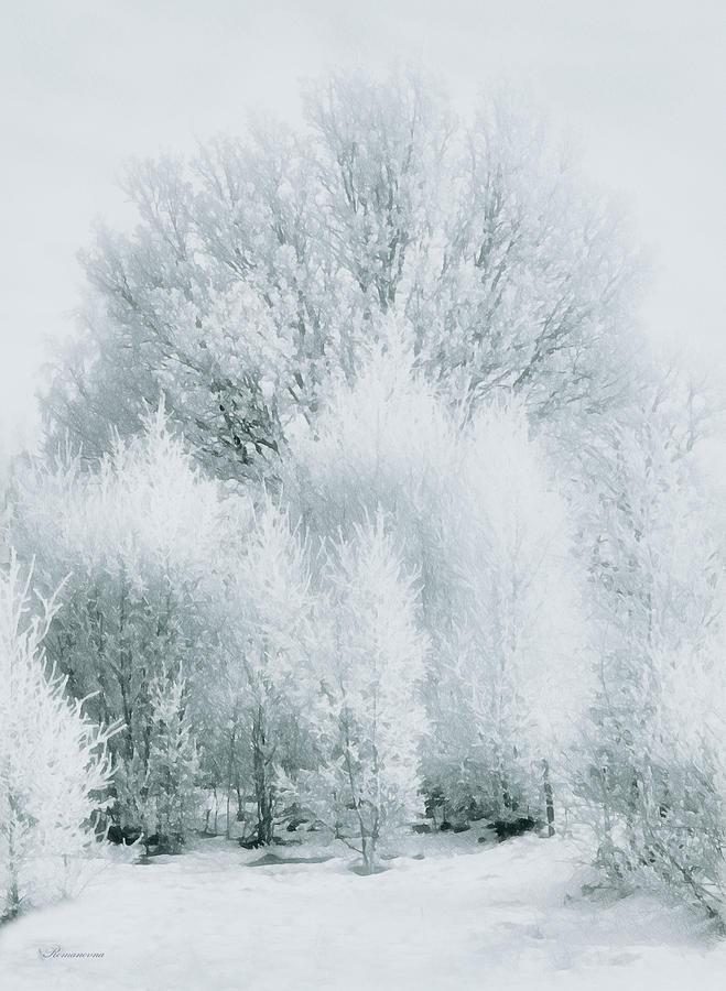 Magical Snow Palace Photograph