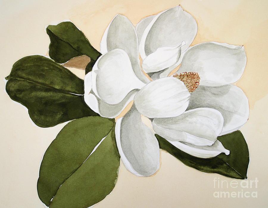 Image Gallery magnolia bloom