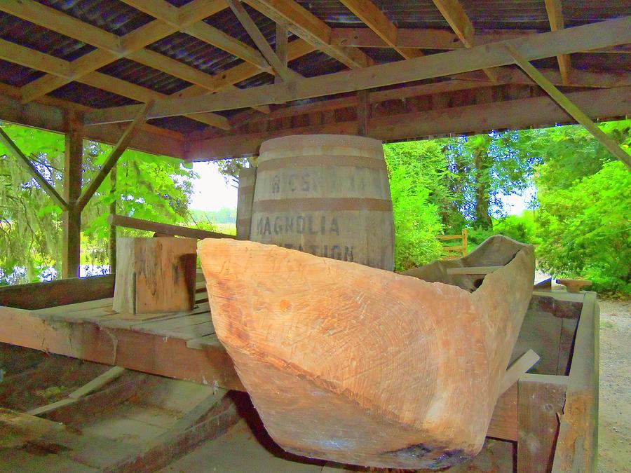 Magnolia Brew 1 Photograph