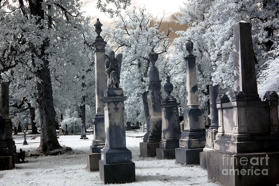 Magnolia Cemetery - Augusta Georgia - Confederate Military Graveyard  Photograph