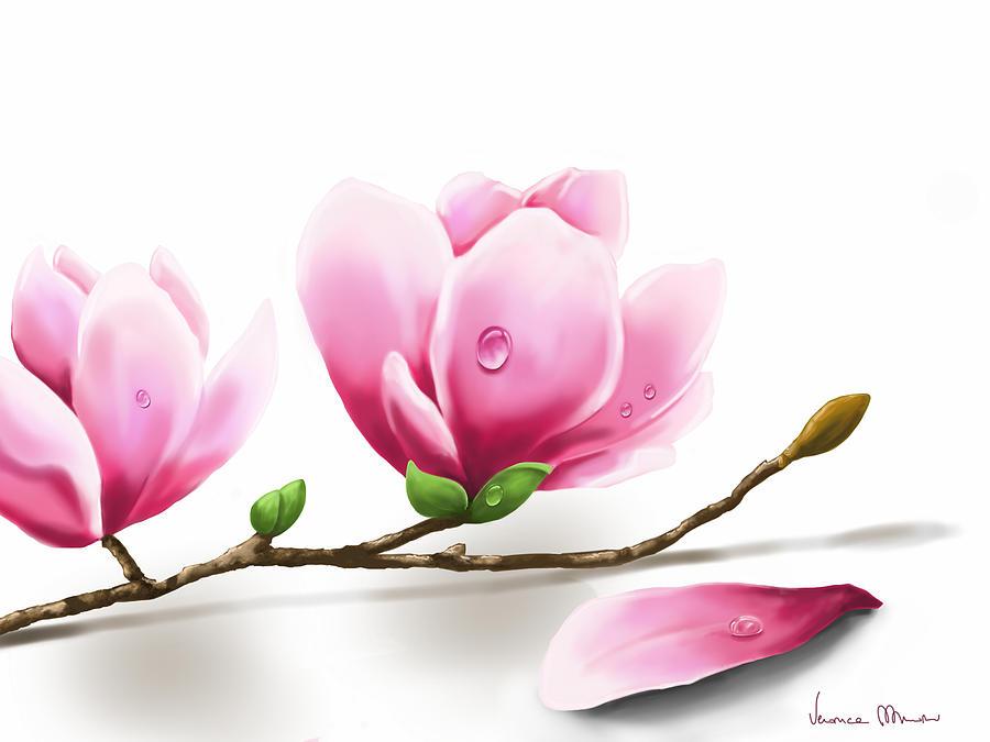 Digital Painting - Magnolia by Veronica Minozzi