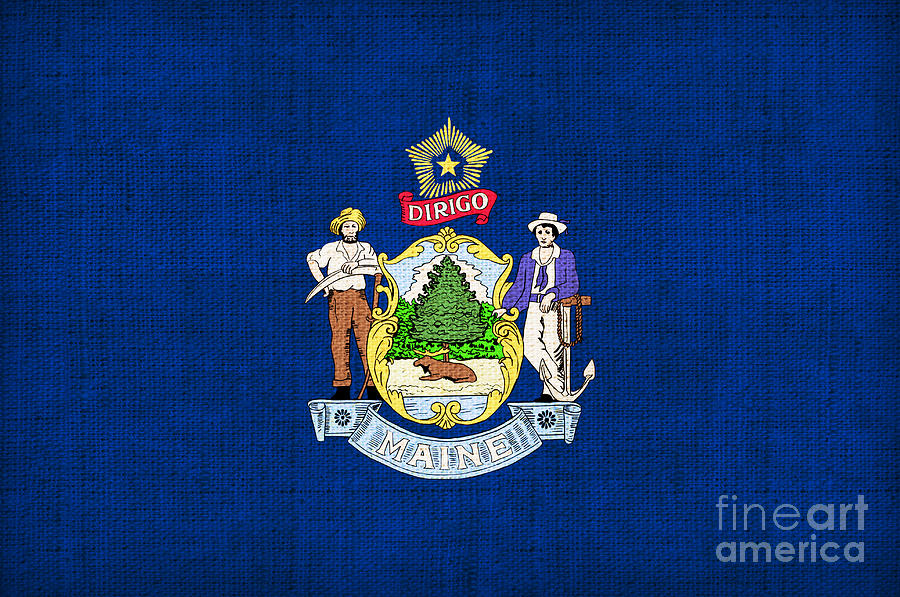 Maine Painting - Maine State Flag by Pixel Chimp