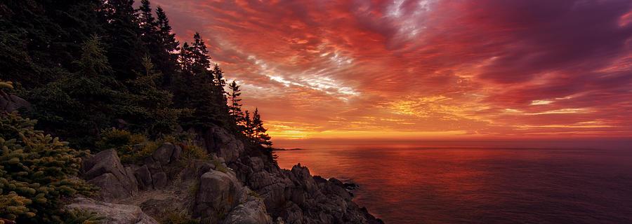 Maines Bold Coast Photograph