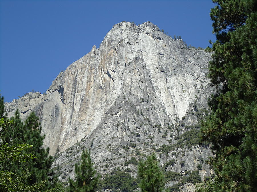 Majestic Yosemite Photograph