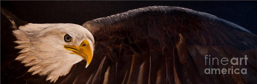 Eagle Painting - Majesty by Julie Bond