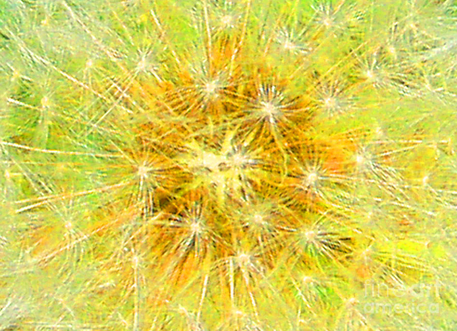 Make A Wish In Greenish Yellow Mixed Media  - Make A Wish In Greenish Yellow Fine Art Print