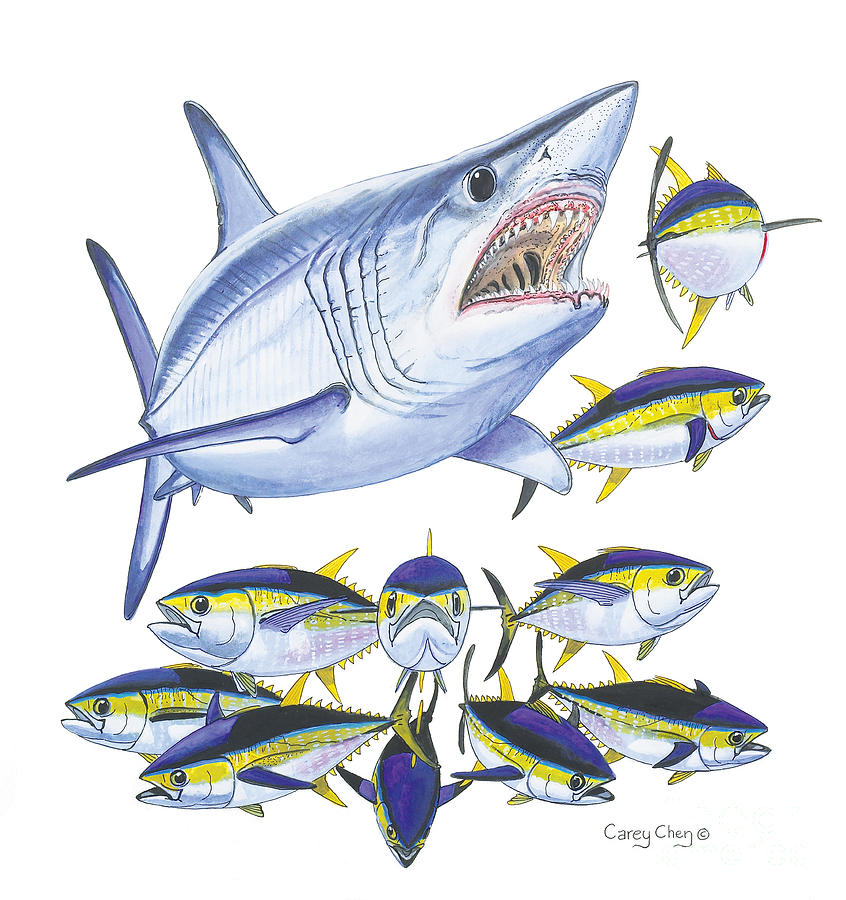 Mako Attack Painting  - Mako Attack Fine Art Print