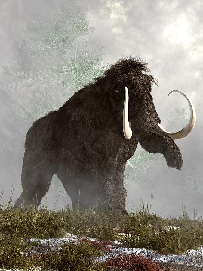 Mammoth In The Fog Digital Art  - Mammoth In The Fog Fine Art Print