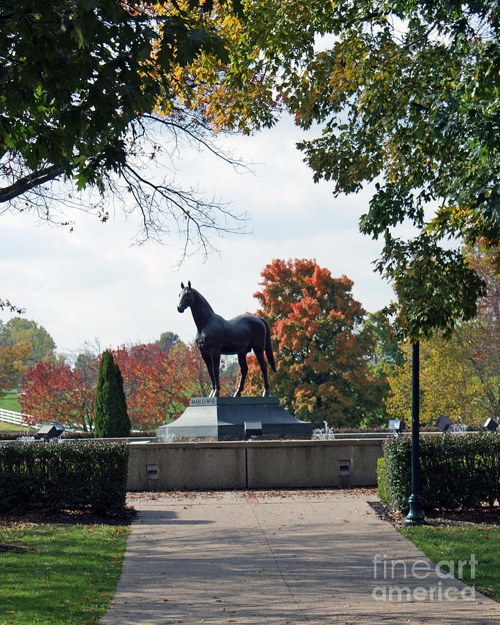 Equestrian Photograph - Man O War Statue  by Roger Potts