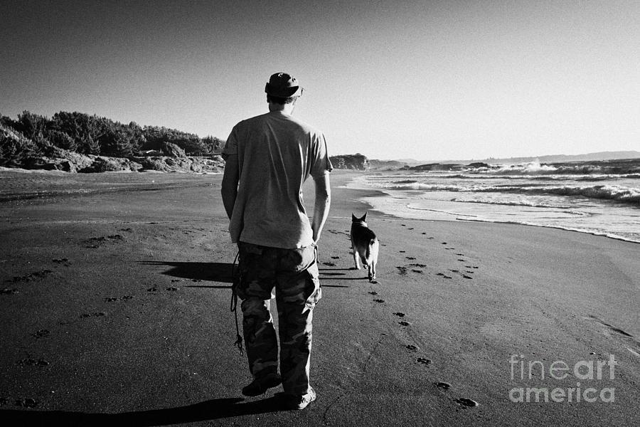 Single Dog Walking Groups
