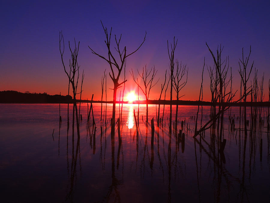 Manasquan Reservoir Sunrise Photograph